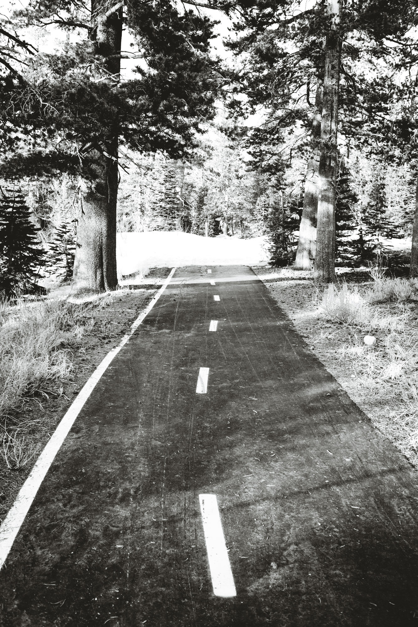 snow-road-twin-lakes-mammoth-lakes