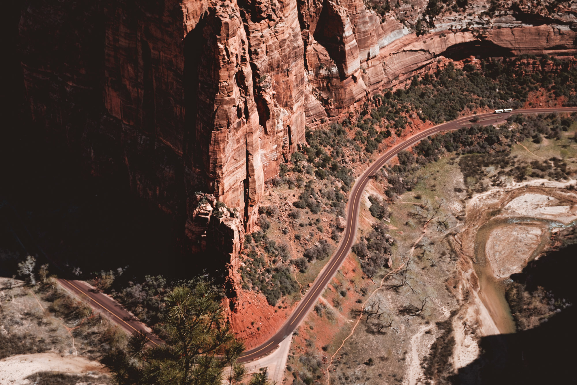 view-from-angels-landing-zion-national-park-utah