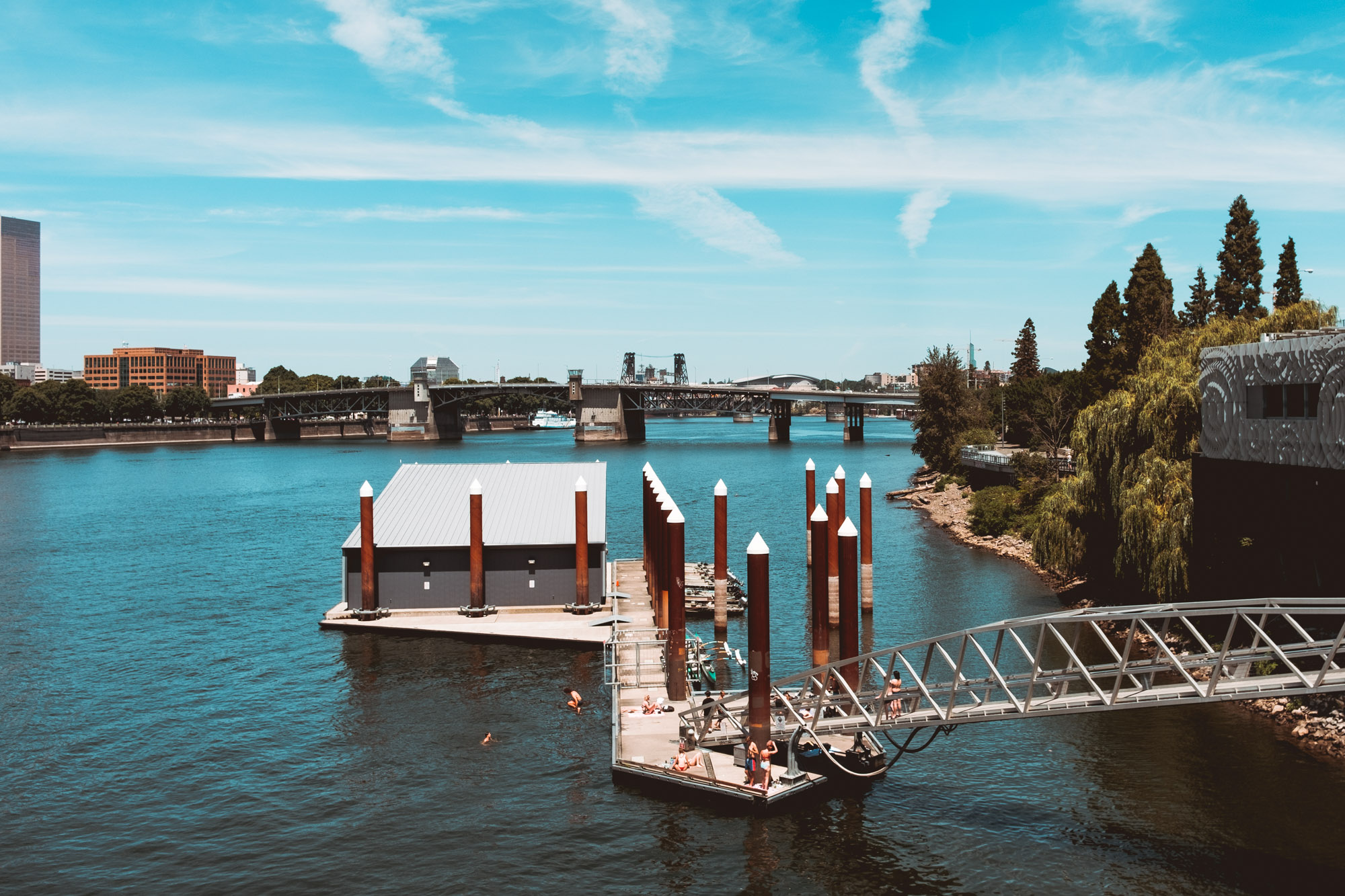People-swimming-willamette-river-Portland-Oregon